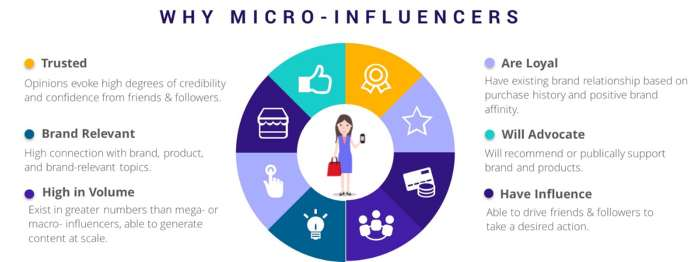 microinfluencer dinamiche chiave